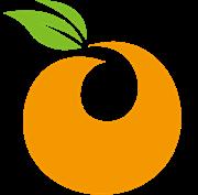 衡阳市金橙装饰设计有限公司