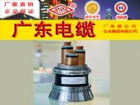 YJV22 高压0.6-1KV 交联辐照电缆